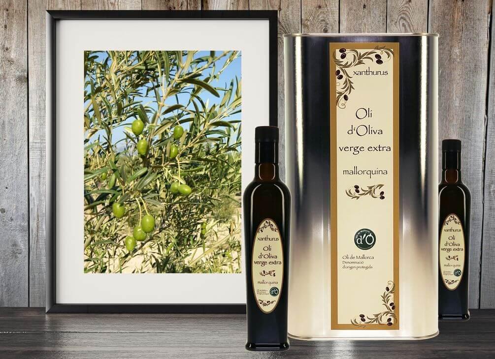 xanthurus Olive Oil virgen extra